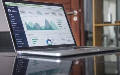 Dynamic Data: How to Collect Data for Your SEO Strategy